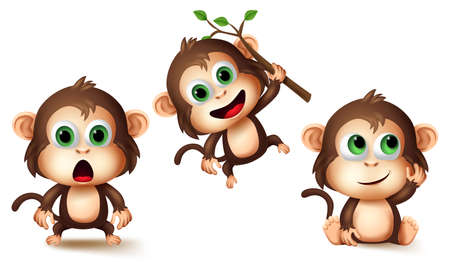 Monkey animals character vector set. Monkeys cute animal kids characters in different pose and gestures like surprise, thinking and hanging for jungle pet collection design elements.
