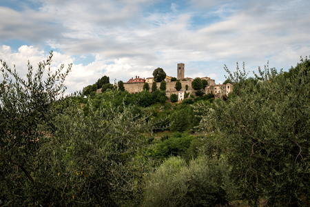The wonderful old town of Motovun on an istrian hill