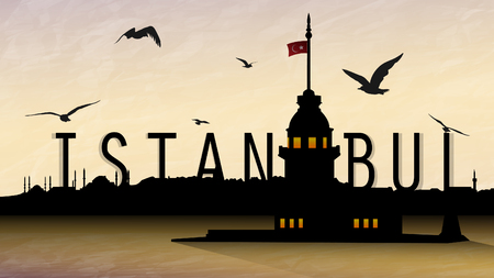 istanbul and maidens tower silhoutte with clear sky and birds around.