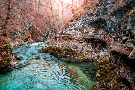 Autumn forest scenery with azure blue river and sun coming through trees, The Vintgar Gorge, Slovenia