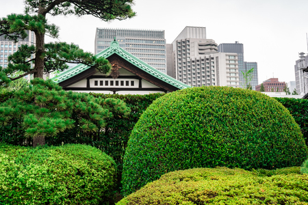 View of Imperial Palace East Garden with business buildings in background and park in foreground, Tokyo, Japan