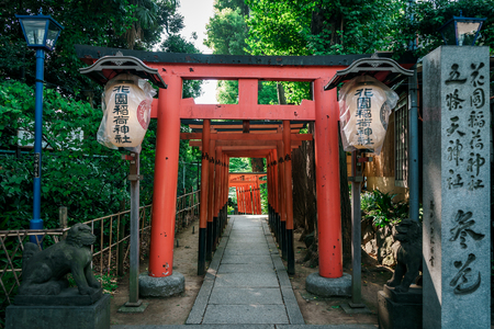 Red Japanese Torii pillars surrounded by trees in Ueno Park, Tokyo, Japan Editorial
