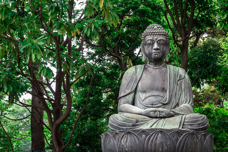 Stone statue of sitting Buddha on a lotus leaf with green trees in the background, Tokyo, Japan
