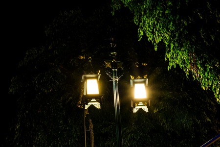 lamp post: Light of lamp post at night, light past a leaves Stock Photo