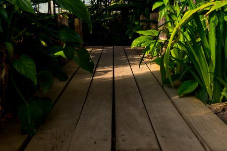 quagmire: Wood bridge into swamp