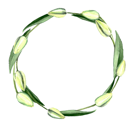 greenery: Watercolor Hand Drawn White Tulips Bouquet Wreath Stock Photo
