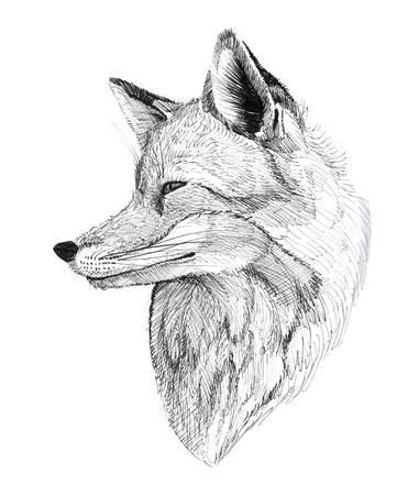 Black Ink Tattoo Hand Drawn Fox Portrait