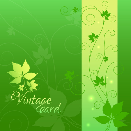 entwined: image of a wild ivy or vines with entwined branches on gradient background Illustration