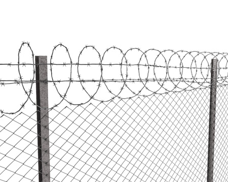 cattle wire wire: Chainlink fence with barbed wire on top isolated on white background