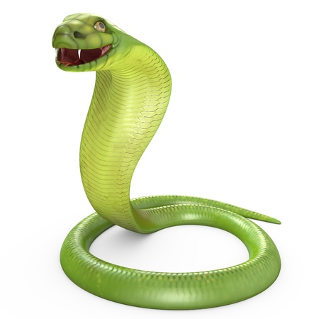 year of the snake: Green cobra bent in ring, isolated on white background