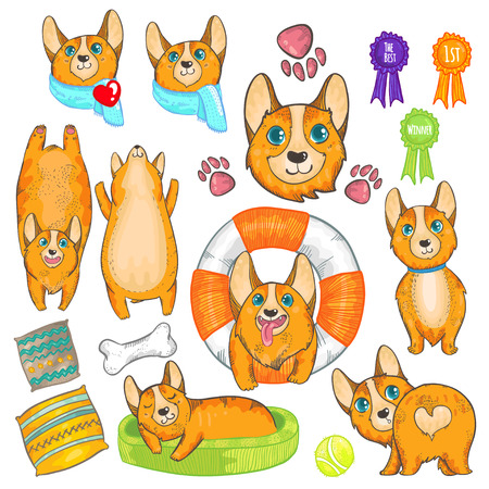 pembroke: illustration set with pembroke welsh corgi. Cute red dogs. Smiling dog. Funny corgi. Corgi with heart. Sleeping corgi. Resting dog. Doodle dogs. Dog with safety ring.