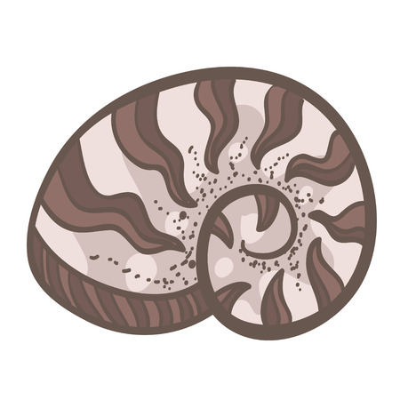 nautilus shell: Vector illustration with  nautilus shell. Cute doodle shell. Cute cartoon shell. Somple shell illustration. Cute simple brown cartoon shell.