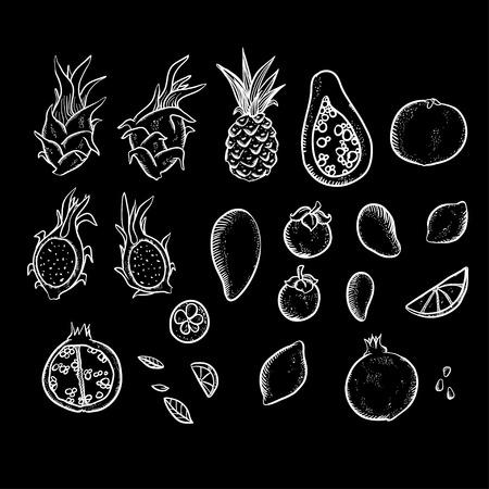 dragon fruit: Vector illustration set with bright Thai fruits. Masngosteen, mong-khut, pineapple, orange, lemon, dragon fruit, mango, papaya and  pomegranate illustration set. Beautiful doodle  fruits. Illustration