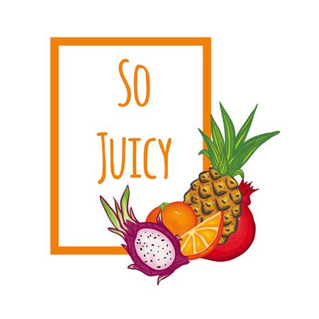 dragon fruit: Vector illustration with Thai fruits. Illustration with text on white background. Juicy illustration.  Bright illustration with leaves, pineapple, dragon fruit, pomegranate and orange. Illustration