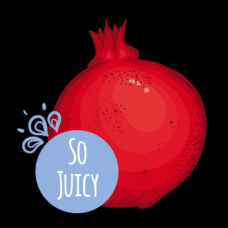 pomegranate juice: Vector illustration with pomegranate on black background. Bright and beautiful pomegranate with bright circle card and text. Summer card.