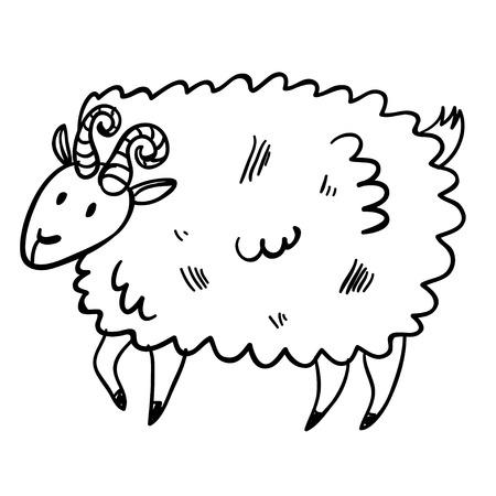 Vector illustration with farm animal. Doodle cute buck. Cartoon sheep. Handy drawn domestic animal.