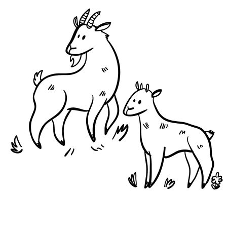 two animals: Vector illustration set with two goats. Funny doodle goats. Handy drawn goats. Cute cartoon domestic animals. Illustration