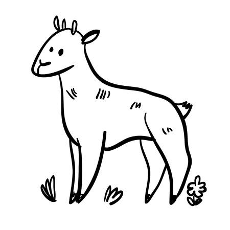nanny goat: Vector illustration set with nanny goat. Funny doodle goat. Handy drawn goat. Cute cartoon domestic animals. Cute farm nanny goat.