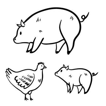 vector illustration  hen: Vector illustration with hen and pigs. Cute vector handy drawn doodle pig, hen. Cartoon cute hen and pig.