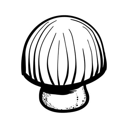 Vector illustration with  button mushroom. Line art handy drawn  button mushroom.