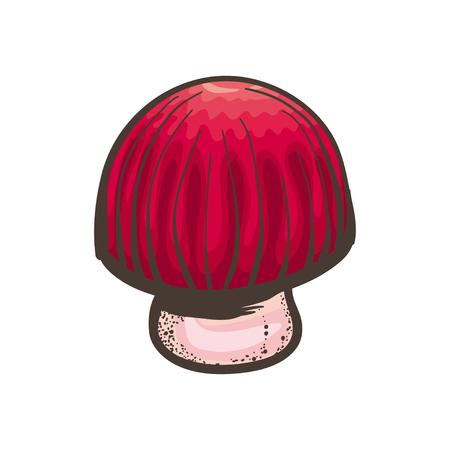 white bacground: Vector bright red mushroom on white bacground.