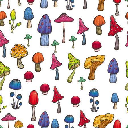 food poison: vector seamless pattern with bright mushrooms on white background colorful