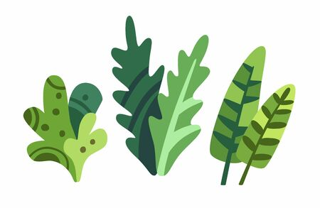 Cute cartoon plants isolated on white background vector. Decorative nice elegant leaves stock flat style illustration. Vettoriali