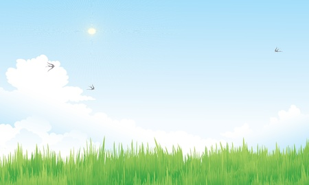 song bird: blue nature sky and grass Illustration