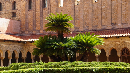 sicilia: palm