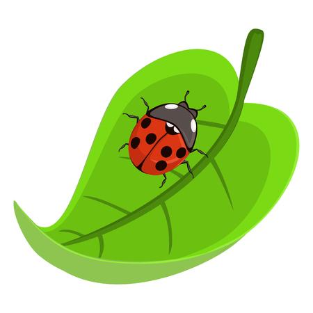 Ladybird 矢量图像