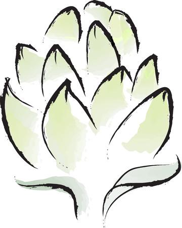 Harvest Artichoke Vettoriali