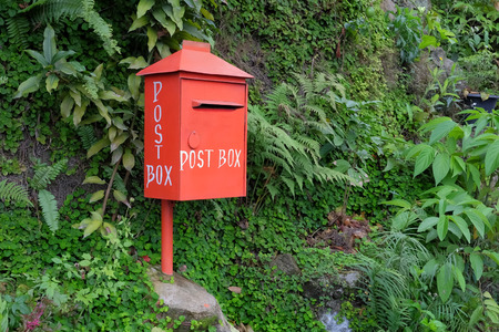 Red postbox on the natural green background, view from the left Stock Photo