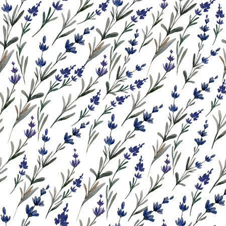 Beautiful vector Pattern with lavanda on white fon Vector