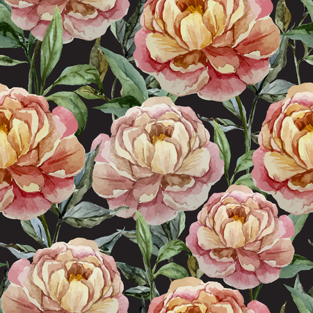 fon: Beautiful vector watercolor pattern with peonies on black fon Illustration