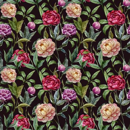 fon: Beautiful vector watercolor pattern with peonies on black fon Illustration
