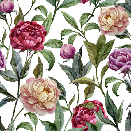 Beautiful vector watercolor pattern with peonies on white fon