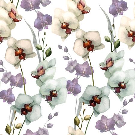 orchidee: Bella pattern con fiori di orchidea su bianco fon