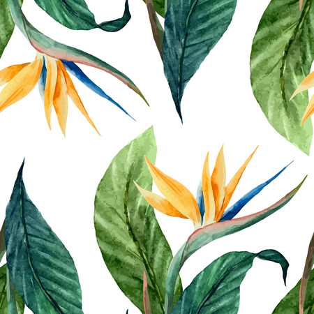 tropical forest: Beautiful vector pattern with tropic leafs on white fon Illustration