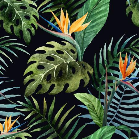 palmeras: Modelo hermoso del vector con el tr�pico veraniegos en fon negro Vectores