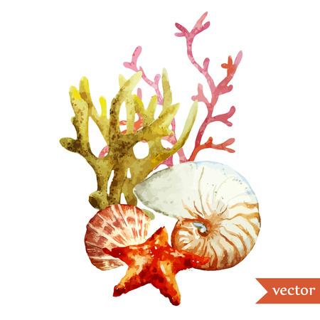Korallen und Muscheln Vektorgrafik