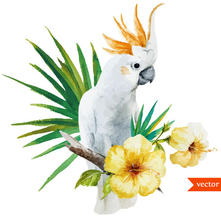 white parrot  イラスト・ベクター素材