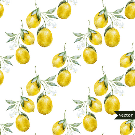 Beautiful watercolor vector pattern with yellow lemons on brunch Vettoriali