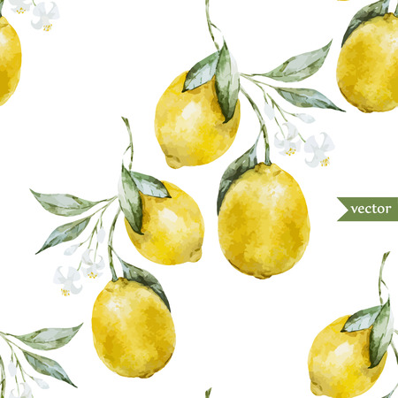 Beautiful watercolor vector pattern with yellow lemons on brunch Ilustrace