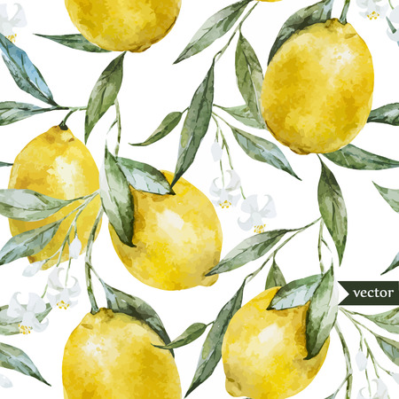 Beautiful watercolor vector pattern with yellow lemons on brunch  イラスト・ベクター素材