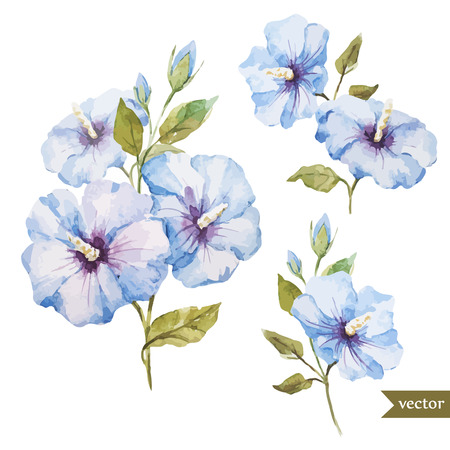 flower borders: Beautiful blue flowers in wreath on white fon