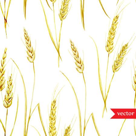 fon: Beautiful watercolor vector golden wheat pattern on white fon