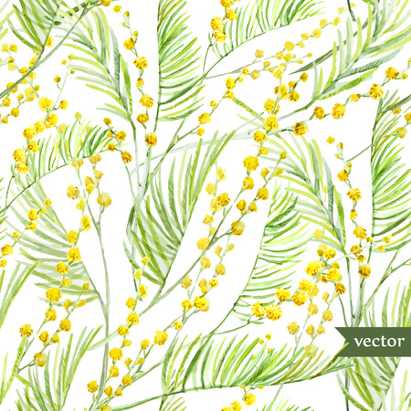 Beautiful watercolor vector spring mimosa pattern on white fon