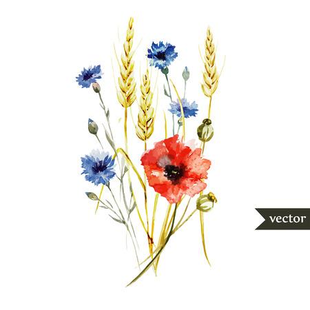야생화 양 귀 비와 아름 다운 수채화 벡터 꽃다발