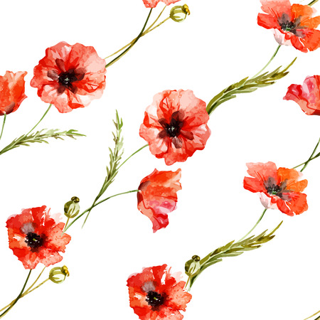 wildflowers: Beautiful watercolor vector pattern with wildflowers poppy Illustration