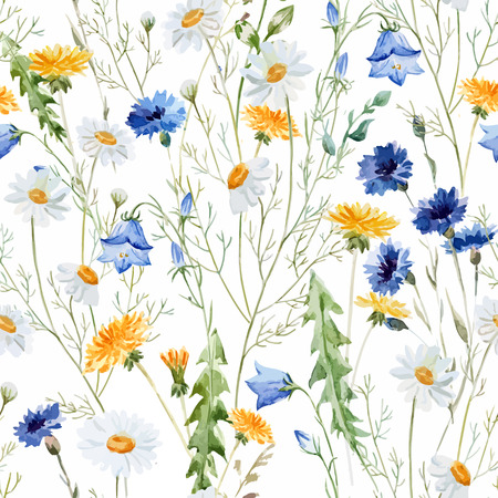 Beautiful watercolor vector pattern with wildflowers poppy Vettoriali